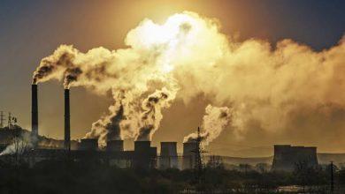 Photo of أخطر من كورونا.. تحذيرات من كارثة بيئية