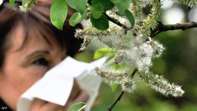 Photo of كيف تفرق بين أعراض حساسية الربيع وأعراض كورونا؟