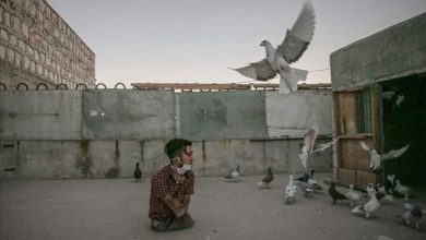 Photo of بلا ساقين.. الشاب السوري أحمد ديوب يحب الحياة رغم قسوتها